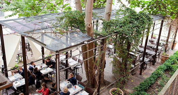 Restaurant la baleine paris au coeur du jardin des plantes for Antibes restaurant le jardin