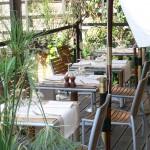 Terrasse du restaurant la Baleine Jardin des plantes